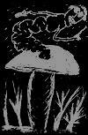 Логотип - В грибе